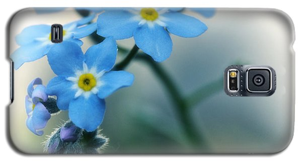 Galaxy S5 Case featuring the photograph Forget Me Not by Simona Ghidini