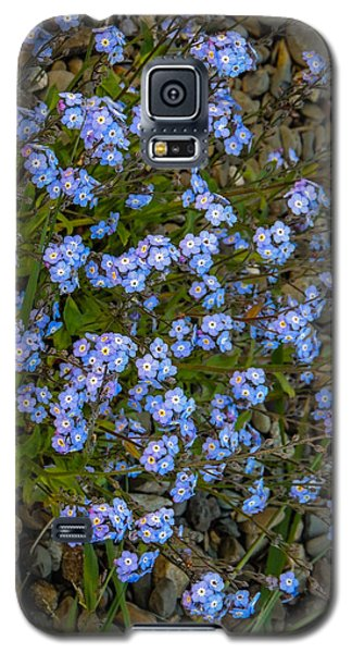 Forget-me-nots Galaxy S5 Case