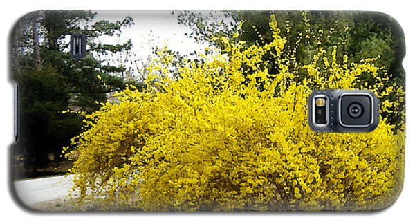 Forsythia Galaxy S5 Case