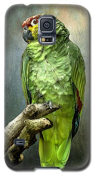 Galaxy S5 Case featuring the photograph Forty Shades Of Green by Brian Tarr