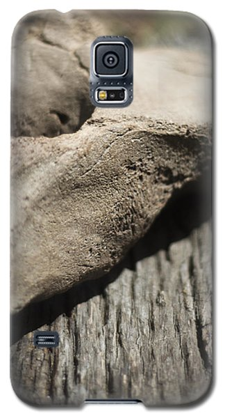 Galaxy S5 Case featuring the photograph Fossil Bone With Weathered Wood by Rebecca Sherman