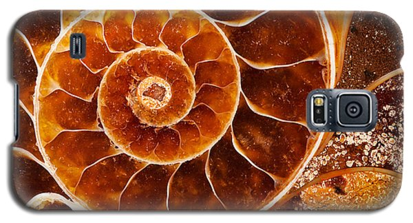 Fossil Nautilus Galaxy S5 Case