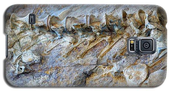 Fossilized Dinosaur Backbone - Dinosaur National National Monument Galaxy S5 Case