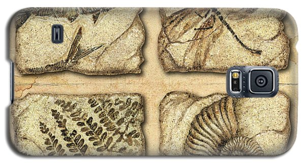 Fossils Galaxy S5 Case by JQ Licensing