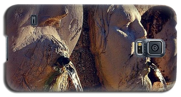 Iger Galaxy S5 Case - Fountain - Fl by Joel Lopez