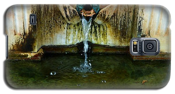Fountain At Andersonville Galaxy S5 Case by Sally Simon