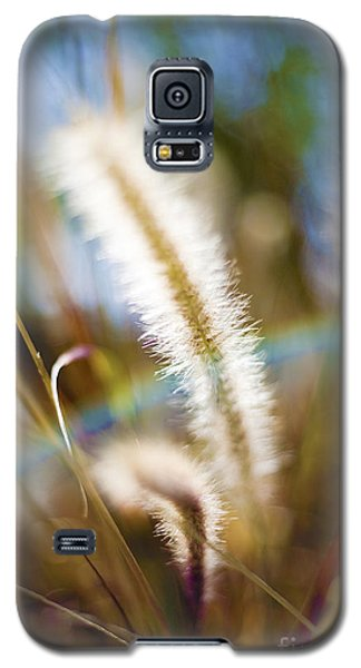 Fountain Grass Galaxy S5 Case
