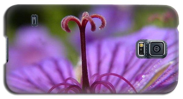 Fountain Of Joy Galaxy S5 Case
