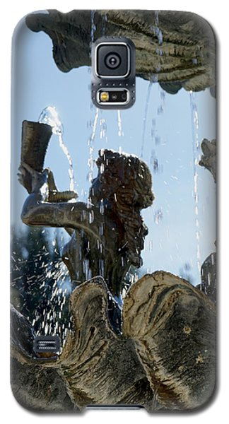 Fountain Of Youth Galaxy S5 Case