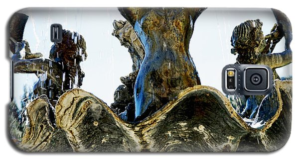 Fountain Of Youth II Galaxy S5 Case