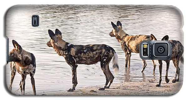 Galaxy S5 Case featuring the photograph Four Alert African Wild Dogs by Liz Leyden
