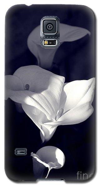 Four Calla Lilies In Shade Galaxy S5 Case