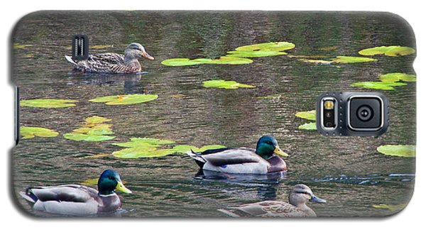 Galaxy S5 Case featuring the photograph Four Ducks by Chris Anderson