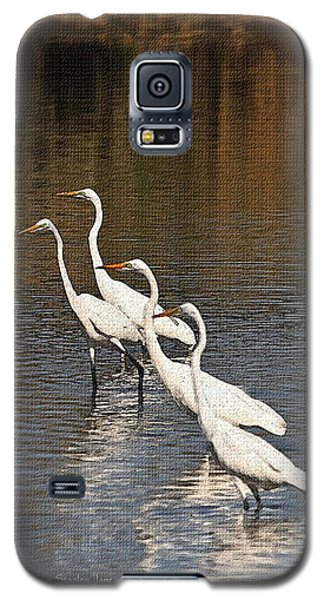 Galaxy S5 Case featuring the photograph Four Egrets Fishing by Tom Janca