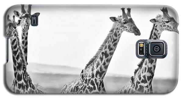 Four Giraffes Galaxy S5 Case