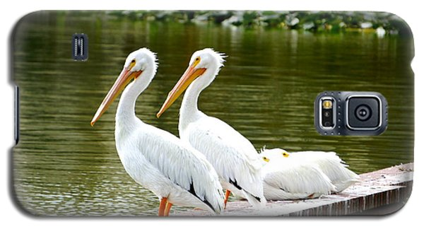 Four In A Row Galaxy S5 Case