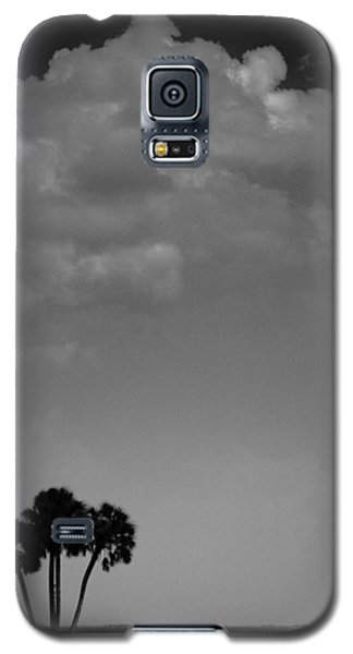 Galaxy S5 Case featuring the photograph Four Palms by Bradley R Youngberg