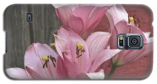 Galaxy S5 Case featuring the photograph Four Pink Asiatic Lilies by Rod Ismay