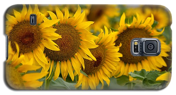 Galaxy S5 Case featuring the photograph Four by Ronda Kimbrow