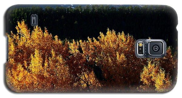 Galaxy S5 Case featuring the photograph Four Seasons by Steven Reed