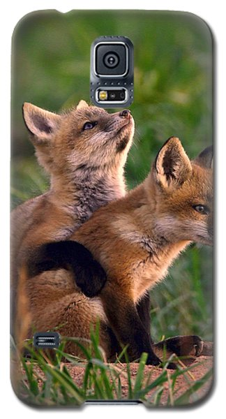Fox Cub Buddies Galaxy S5 Case
