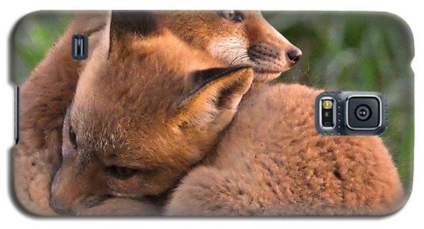 Fox Cubs Cuddle Galaxy S5 Case