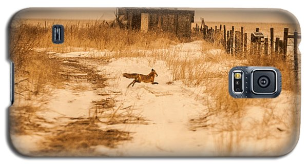 Galaxy S5 Case featuring the photograph Fox On The Run by Shirley Heier