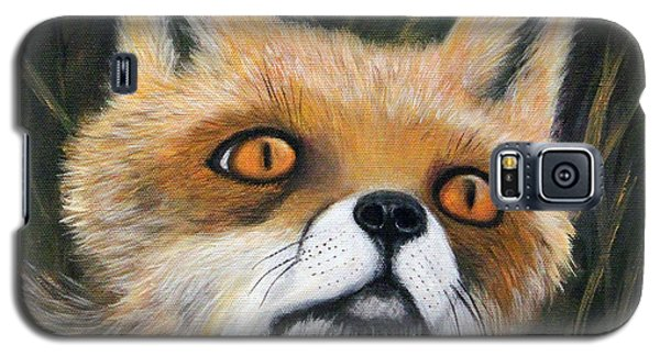Fox Stare Galaxy S5 Case by Janet Greer Sammons