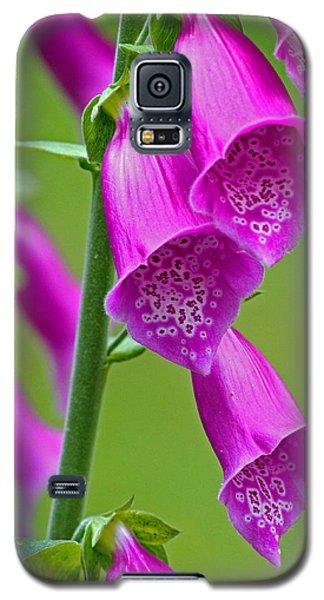 Foxglove Digitalis Purpurea Galaxy S5 Case