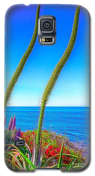 Galaxy S5 Case featuring the photograph Foxtails On The Pacific by Jim Carrell