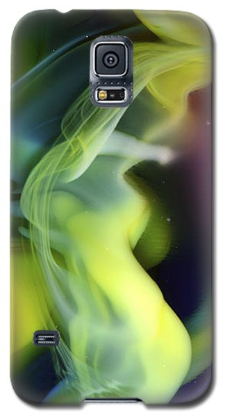 Fractal Abstract 0501 Galaxy S5 Case