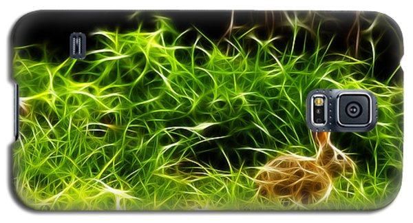 Galaxy S5 Case featuring the photograph Fractal - California Hare - 1925 by James Ahn