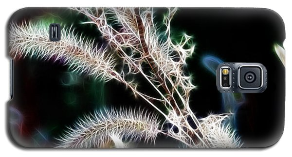 Fractals With Weeds Galaxy S5 Case by JRP Photography