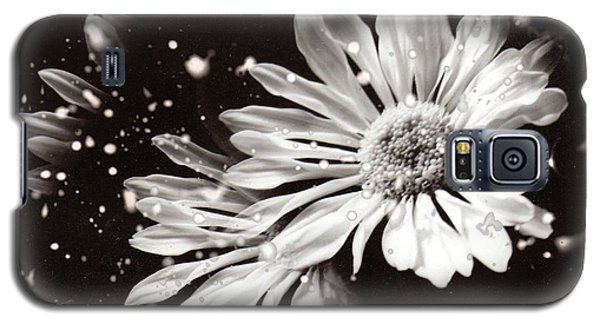 Fractured Daisy Galaxy S5 Case