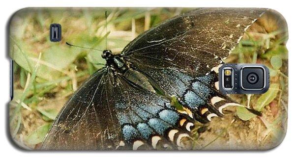 Fragile Beauty Galaxy S5 Case