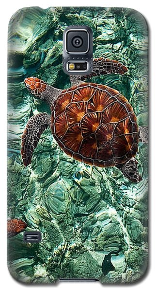Fragile Underwater World. Sea Turtles In A Crystal Water. Maldives Galaxy S5 Case by Jenny Rainbow