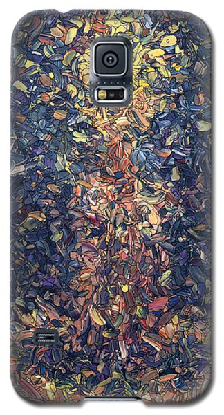 Galaxy S5 Case featuring the painting Fragmented Flame by James W Johnson