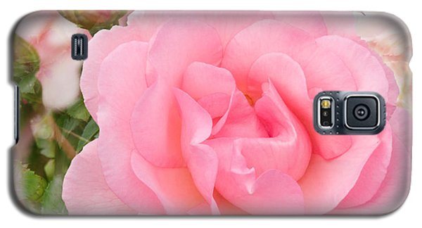 Fragrant Cloud Rose Galaxy S5 Case by Jane McIlroy