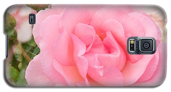 Fragrant Cloud Rose Galaxy S5 Case