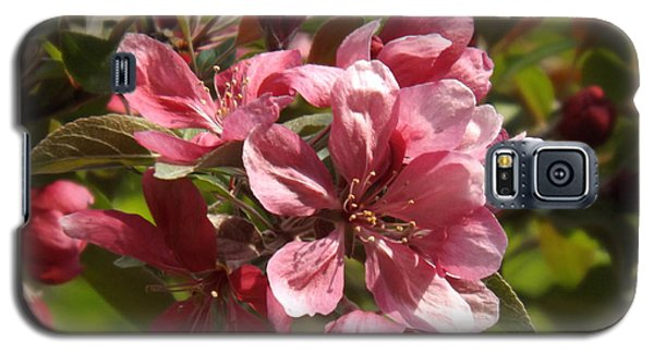 Fragrant Crab Apple Blossoms Galaxy S5 Case