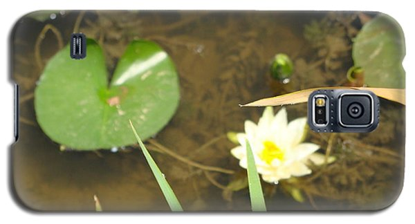 Fragrant Waterlily Galaxy S5 Case