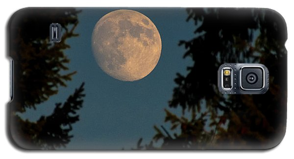 Framed Moon Galaxy S5 Case by Katie Wing Vigil