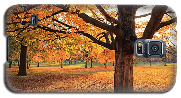 Francis Park Autumn Maple Galaxy S5 Case