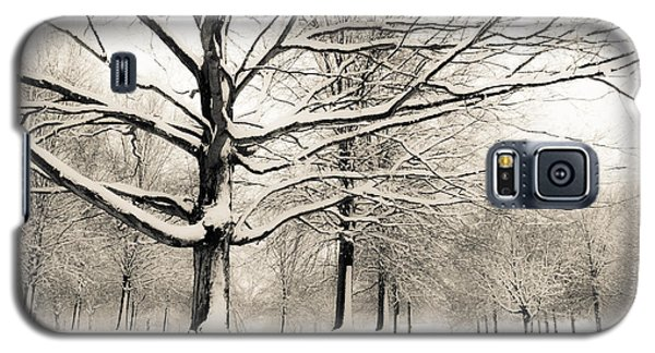 Francis Park In Snow Galaxy S5 Case
