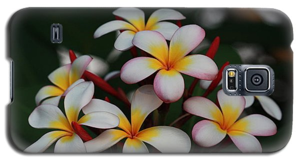Galaxy S5 Case featuring the photograph Frangipani Bouquet by Keith Hawley