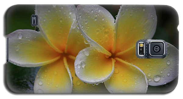 Frangipani Pair Galaxy S5 Case