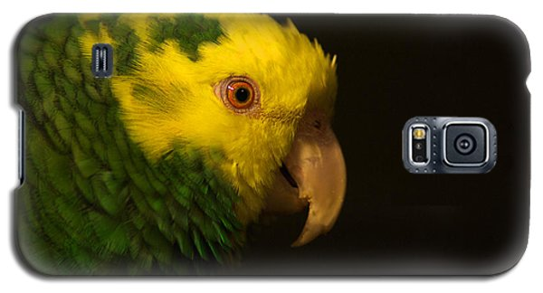 Galaxy S5 Case featuring the photograph Fred The Amazon Parrot by Melissa Messick
