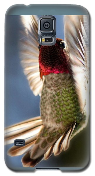Free Falling Galaxy S5 Case by Melanie Lankford Photography