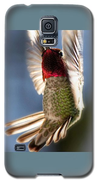 Galaxy S5 Case featuring the photograph Free Falling by Melanie Lankford Photography
