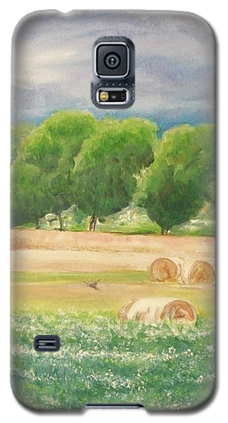 Galaxy S5 Case featuring the painting Freedom by Jane  See